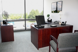 Malvern private office 3