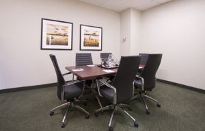 Bala Cynwyd Video Conference Room